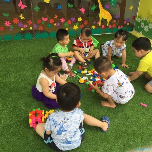 Trường Mầm non Hoa Trạng Nguyên Hà Đông - Tô Hiệu