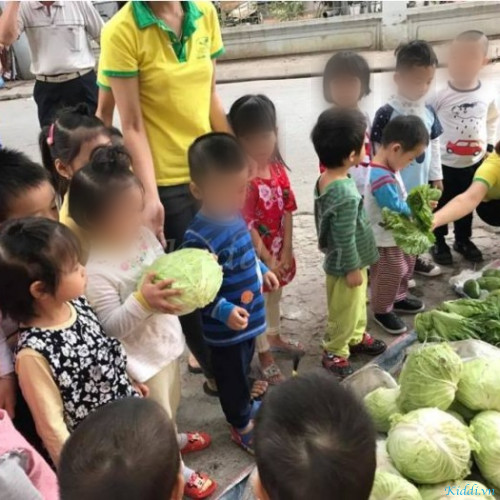 Trường mầm non Hà Anh Montessori - Khương Đình