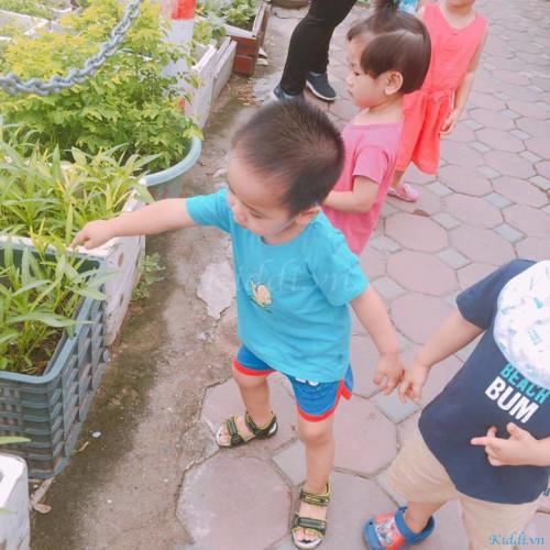 Trường Mầm non Joyful Baby Montessori - Lê Trọng Tấn