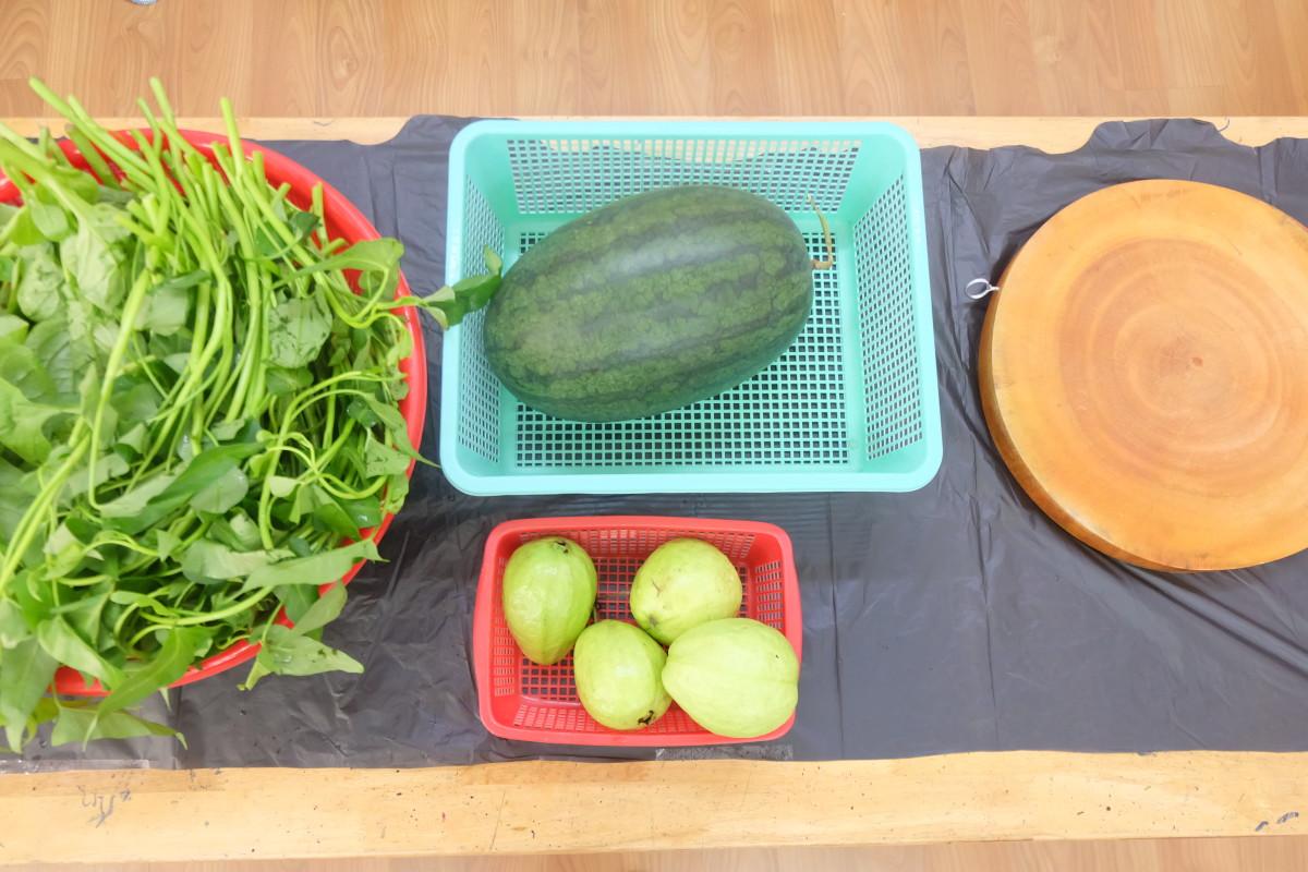 Cùng giúp cô giáo nhặt rau muống và rửa trái cây