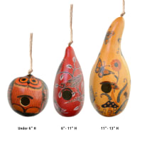 Large Assorted Gourd Birdhouses
