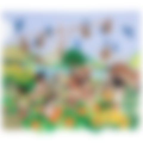arp269m-native-american-birdhouse-arpillera-20170426_1