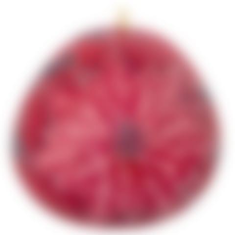 CRG752P Red Poinsettia