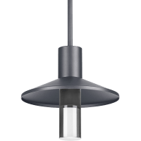 Ash 12 Outdoor Pendant Dome Charcoal 2700K 90 CRI  2700K High Output