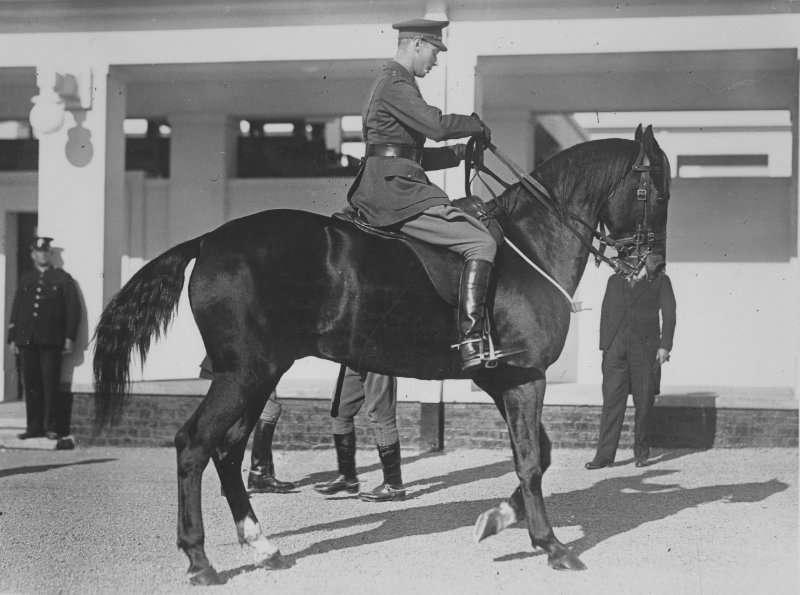 The Duke of York on a horse