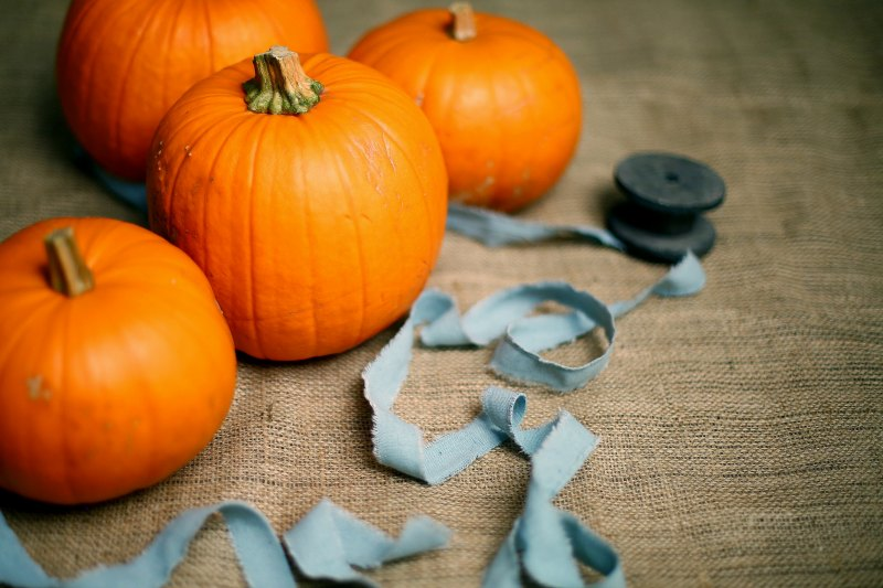 Learn how to save money this halloween without breaking the bank
