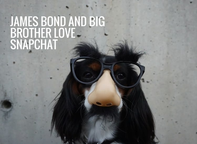 James Bond and Big Brother Love Snapchat Specs