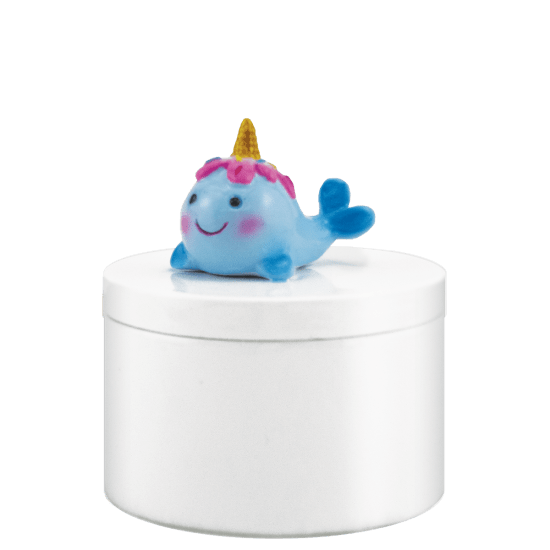 Picture of Narwhal Jewelry Box