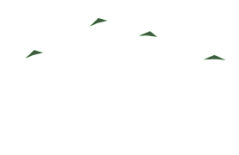 Anderson Creek Lodge Bed & Breakfast Retreat