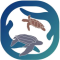 Latin American Sea Turtles logo