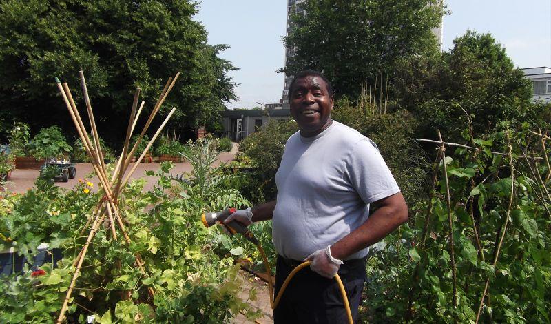 St Mary's Secret Garden: London Discovery Tour: Explore a Secret Urban Garden