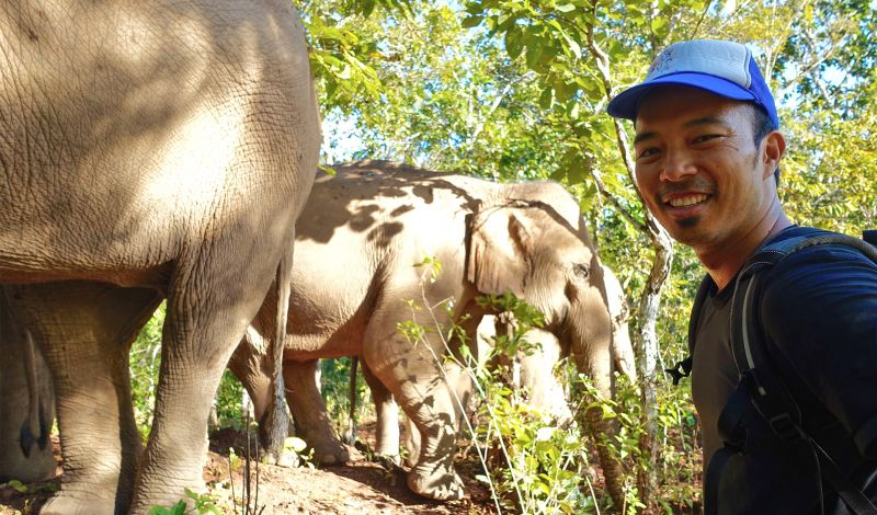 Kindred Spirit Elephant Sanctuary: Chiang Mai Animal Tour: Hike Through the Forest with Elephants