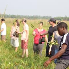 Eco adventure tours - medicinal plants