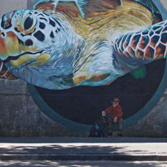 Buenos Aires city murals