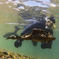 Bolivian Amphibian Initiative