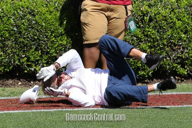 Watch Steve Spurrier drop wide-open touchdown pass in SC spring game