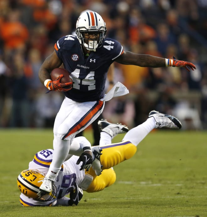 Artis-Payne (44) had one of the best seasons for a running back in Auburn history in 2014.