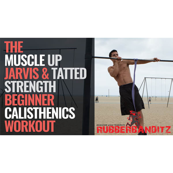 Calisthenics Beginner eBook by @Muscle_up_jarvis WCO Master Trainer