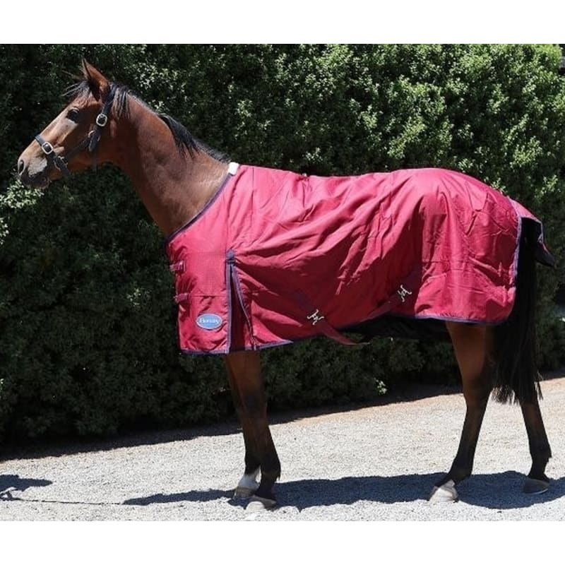 OPEN BOX Barnsby Equestrian Waterproof Horse Winter Blanket/Turnout Rug - Standard Neck