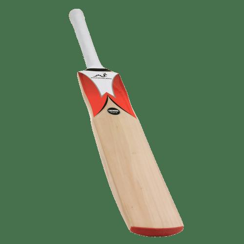 Woodworm Fireworm Flame Junior Cricket Bat