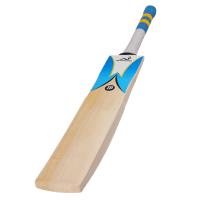 Woodworm iBat Select Grade 1 Junior Cricket Bat
