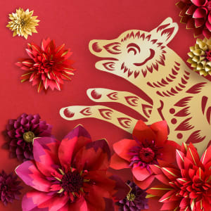 Lunar New Year | Events and Activities