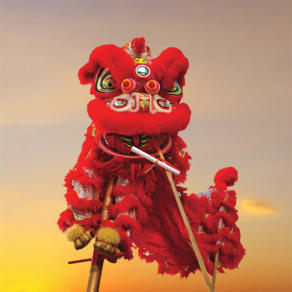 Lunar New Year | Lion Dance