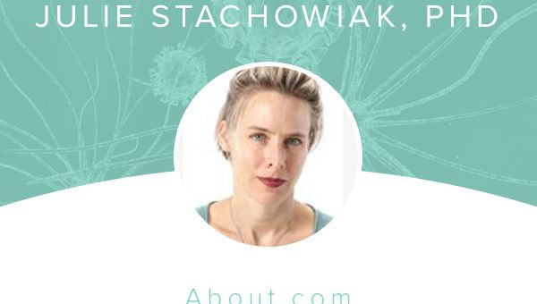 Julie Stachowiak, PhD
