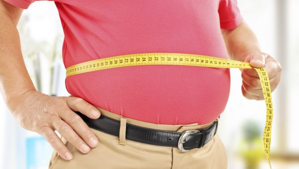 Bacteria And Obesity