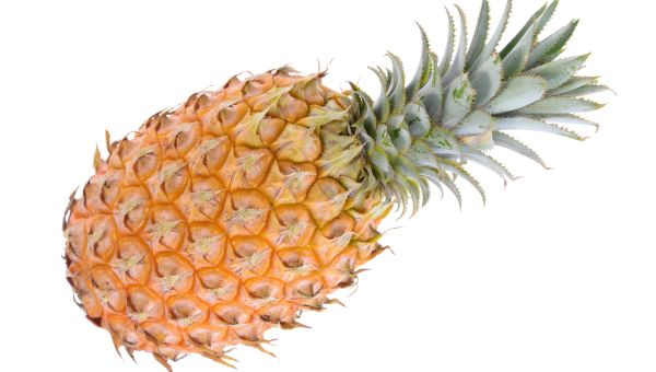 Week 33 – Baby's Size: Pineapple