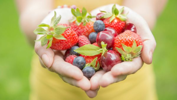 Antioxidant-Rich Berries