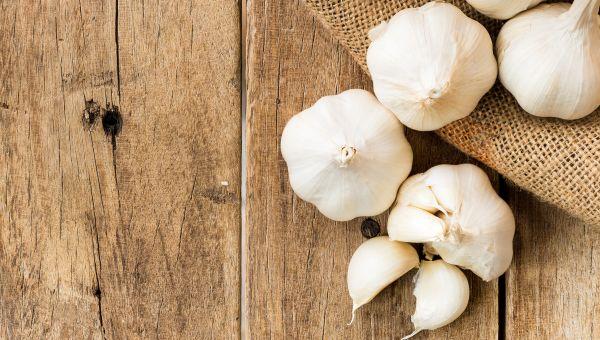 Myth: Eating garlic repels mosquitoes