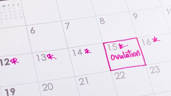 Ovulation and other factors