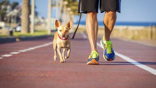 Walking Motivation: 5 Ways to Make It a Habit