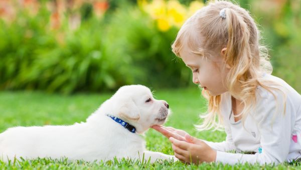 Woof—It's Good for Kiddy Gut Biome
