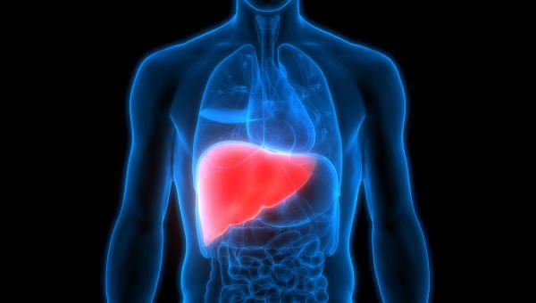 News: Liver Cancer, Cirrhosis Deaths on the Rise