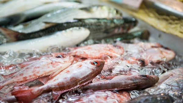 Hawaii Health Alert: Should You Be Worried About Mercury in Fish?