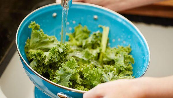 Keep Kale Cool