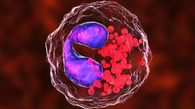Understanding Eosinophils and E-Asthma