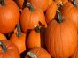 5 Fun Ways to Get Your Pumpkin Fix