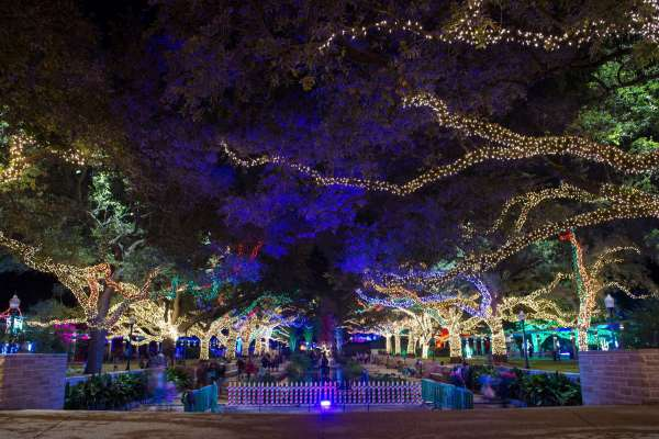 7th Annual Wave Holiday Lights Tours