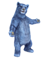 Blue Bear Welcome Pose