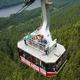 Grouse Mountain Skyride Surf Adventure