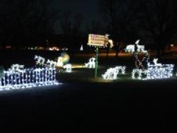 Pecan Grove Lights at Central State