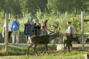 Large Animal Research Station Caribou LARS