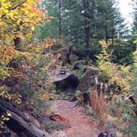 Sahalie Fall Foliage by Molly Blancett