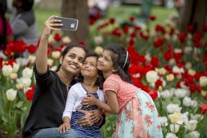 selfie tulip family
