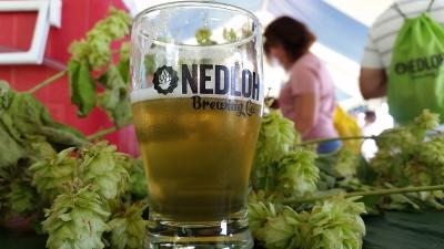 2014-nedloh-brewing-bloomfield-hopsfest-beer.jpg