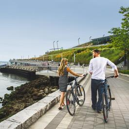 Seawall with Bikes