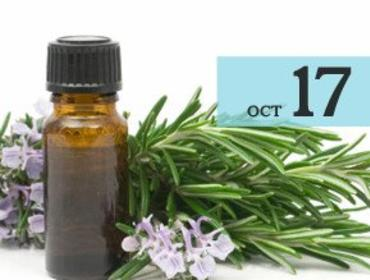 Supporting Your Body's Systems with Essential Oils